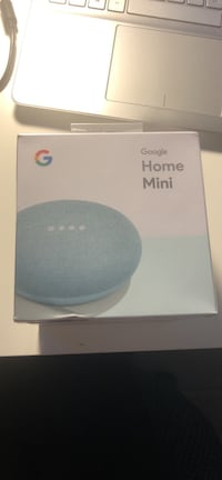 Google Home Mini Silver Spring, 20904