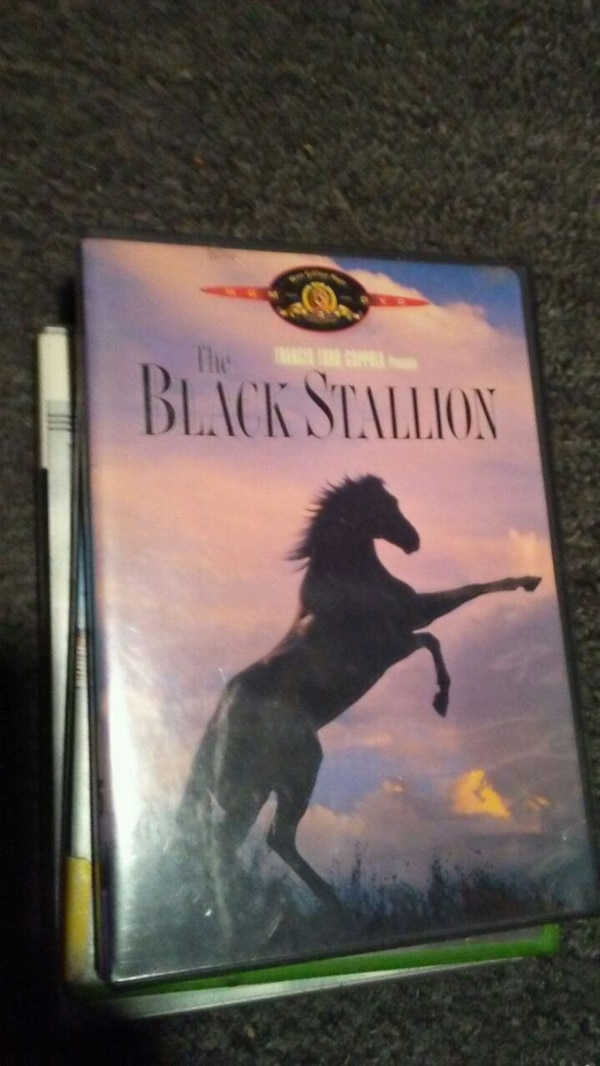 The Black Stallion case
