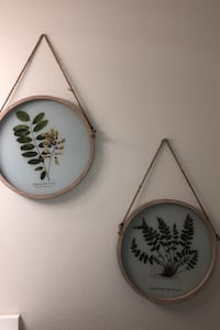 Set of plant wall hangings Leesburg, 20176