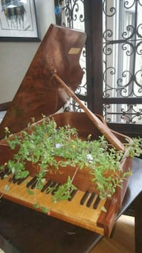 Mini piano & succulents San Diego, 92104