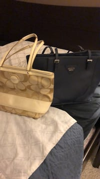 FREE COACH BAG WITH THIS BAG ( BLUE BAG IN PIC GUESS) Hamilton, L0R 1C0
