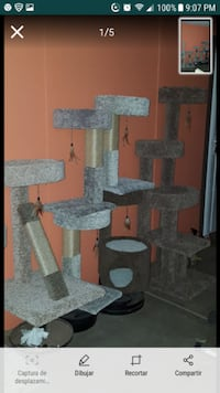 brown and gray cat tree painting 1953 mi