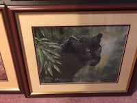 3 Wildlife pictures. All 24 X 19  Selling all together $30 Calgary, T2A 7S7