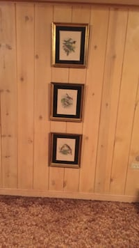 three bird paintings with frame Park Forest, 60466
