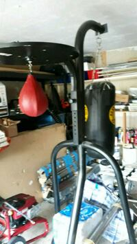 Boxing Heavy Bag with Speed bag Stand. New Hyde Park, 11040