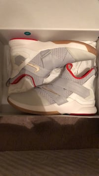 LeBron Soldier 12s Size 13 Maryville, 62062