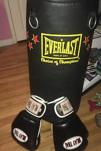 Everlast punching bag and muay thai boxing gloves