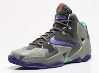 Lebron 11s Terracotta Warriors (9.5) Riverdale, 20737