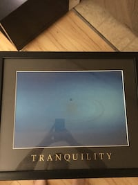 Tranquility framed art  Winnipeg, R2G 0M2
