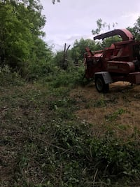Affordable hazardous tree care and hazardous tree removal specialists Sherman