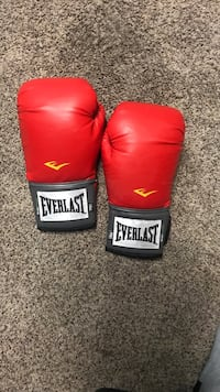 Boxing Everlast Gloves Hyattsville, 20783