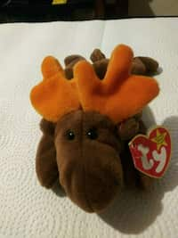 Used brown bear Ty Beanie Baby for sale in Fall River - letgo 4e788bd93d80
