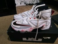 LeBrons 13 size 12