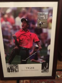 Tiger Woods Picture 5th Winner of the Masters Chesapeake, 23322