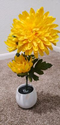 Yellow Flower With Vase $15 Henderson, 89074