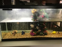 55 gal tank with all accessories  San Antonio, 78109
