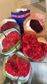 Assorted red roses and carnations  Brampton, L6V 4H1