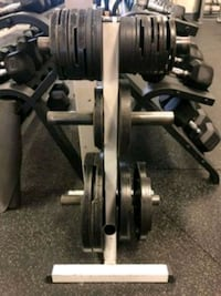 Body Solid Olympic Plate Weight Tree Silver Spring