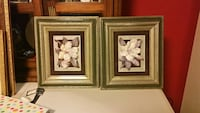 two white petaled flower paintings with brown wooden frames