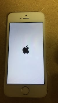 silver iPhone 5s Raleigh, 27610
