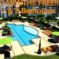 2nd Chance Leasing with 2 Months Free!