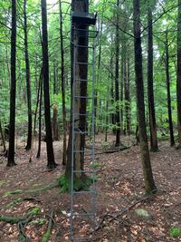 Hunting deer stand rivers edge. Basically new. Used once.  Mirador Pointe-Claire, H9R 4W1