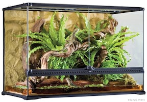 36 by 18 by 24 reptile tank