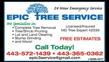 Epic Tree Service calling card
