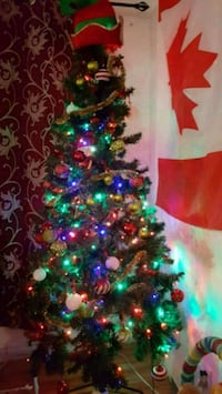 Christmas Tree with christmas lights installed. Montréal, H3W 1J3