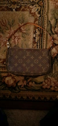 new Louis Vuitton bag
