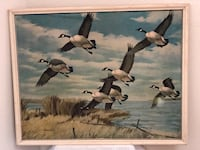 Artwork Rare ~ Large Canada Geese In Flight ~ Framed Print ~ 1950s/60s Phoenix, 85044