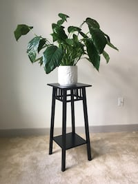 Black tall side table, plant stand, catchall entrance table Washington, 20017