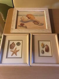 NAUTICAL SEASIDE SHELLS SET OF THREE. VINTAGE ART COLLECTIBLES BALANGIER FINE ART AND FRAMING LITTLE FERRY NJ FINE ART Norfolk, 23502