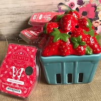 Strawberry Scentsy Warmer Edmonton, T6E 1T7
