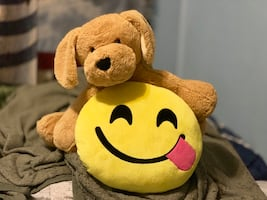 Emoji Pillow & Stuffed Dog