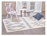 Brand new Shaggy Rug 5.2 feet by 7.6 feet Halton Hills, L7G