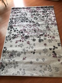 New 4X6 area rug Elkridge, 21075