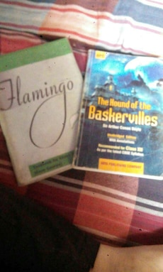 Flamingo and The Hound of the Baskervilles books