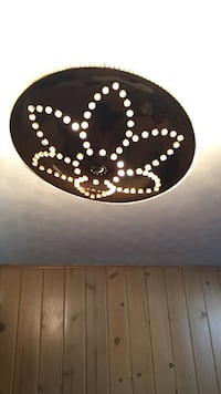 Ceiling light shade Park Forest, 60466