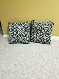2 Brand new pillows...never used