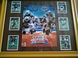 Chicago Bears Super Bowl XLI