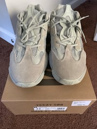 Yezzy Salt 500 Size 12 Washington, 20019