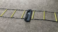 20 ft agility ladder and bag