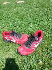 10 and a half Nikes Louisville, 40272