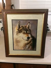 Wolf picture Winchester, 22603