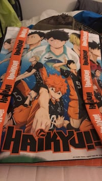 HAIKYU BAG  Centreville, 20120
