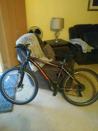 Reebok mens 21 speed mountain bicycle