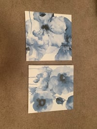 Pair canvas pictures- home sense  Halifax, B3J 3M8