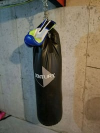 Century Heavybag and Everlast Boxing gloves Fort Saskatchewan, T8L 4S2