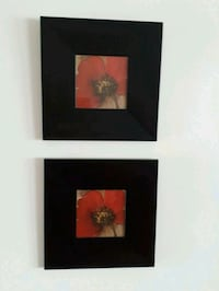 2 Red Flower Black Frames. $10.00 each Brampton, L7A 2X9